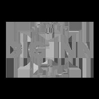 DigInn logo